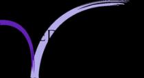 Biron Partners Logo